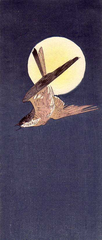 Gesso-2-web-bird-and-moon-.jpg